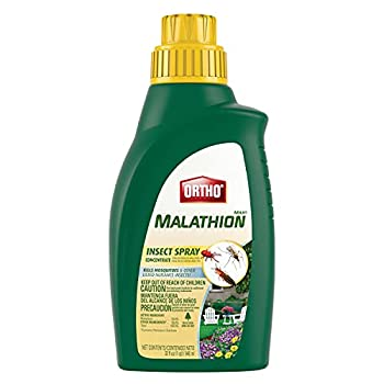Ortho MAX Malathion Concentrate Insect Spray