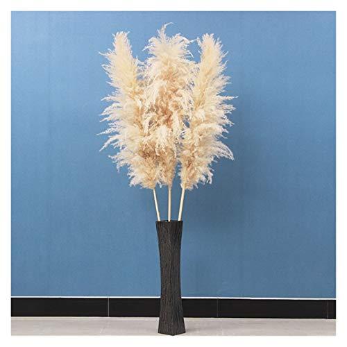 TZZD Getrocknete Blumen 30 Zoll Hochzeit spezielles Pampasgras Dekor groß Fluffy Feder Hochzeit Blumen Pflanzen natürliche weiße getrocknete Blumen (Farbe : 3pcs dabai puwei)