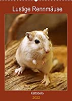Lustige Rennmaeuse (Wandkalender 2022 DIN A2 hoch): Liebenswerte Heimtiere (Planer, 14 Seiten )