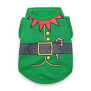 DroolingDog Pet Dog Christmas Clothes Elf Costume for Small Dogs, Green, Medium