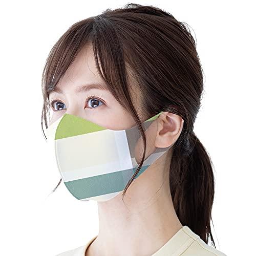 マスク 洗える 耳が痛くならないマスク 繰り返し使える 抗菌マスク UVカット 花粉症対策 衛生 ウィルス対策 Lサイズ 男女兼用 チェック ラテカラー ピスタチオ mskl-02201