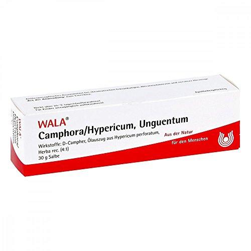 Camphora/Hypericum Salbe, 30 g