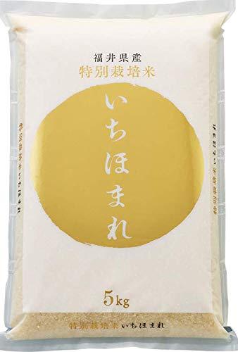 【新米】令和3年産 いちほまれ 福井県産 特別栽培米 精米 (5kg)