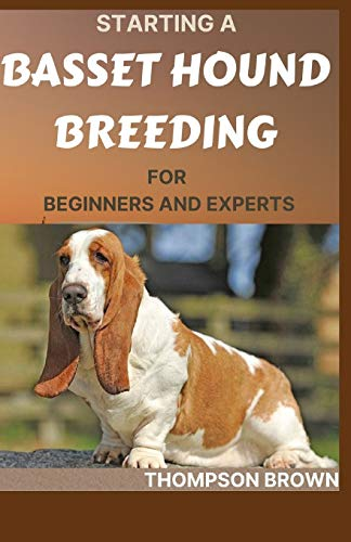 STARTING A BASSET HOUND BREEDING FOR BEGINNERS AND EXPERTS: Step By Step Guide to: Buying, Owning, Health, Grooming, Training, Obedience, Understanding and Caring for Your Basset Hound