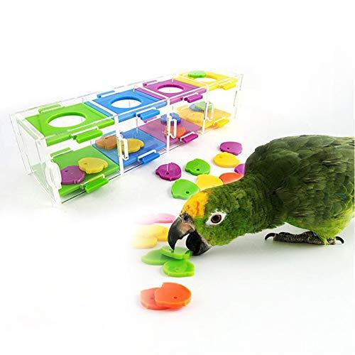Smandy Vogel Spielzeug, Bunte Papagei Intelligenz Spielzeug Interessante Vögel Training Interaktives Puzzle Spielzeug für Papageien, Vögel, Sittich, Nymphensittich und andere kleine Haustiere