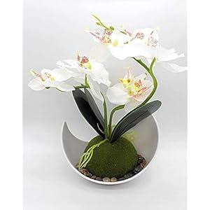 Árbol de tejos Casa Orquídea Artificial Planta y Maceta Blanca Orquídeas Artificiales Arreglos de Flores en Jarrón…