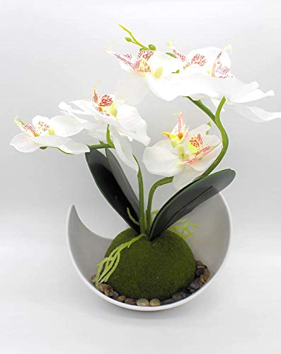 Yew tree Home Orquídea artificial y maceta de orquídeas artificiales blancas, arreglos florales en jarrón, decoración de…