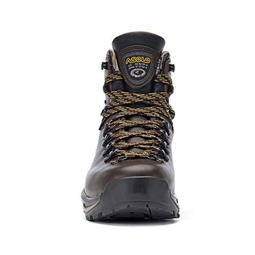 Asolo, Chaussures montantes pour Homme - multicolore - châtaigne,