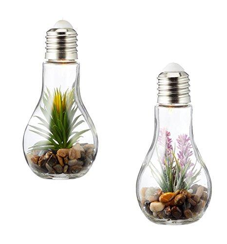 2er Set Sukkulenten LED Glühbirne Glas B x H: 8x19cm Deko Lampe Kunstpflanze Grün Hängelampe Tischdeko