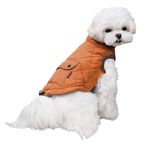 Dociote Hund Wintermantel Winterjacke mit Krageloch, Tasche, Baumwolle Gepolstert Hundemantel Weste für kleine Hunde XL Orange