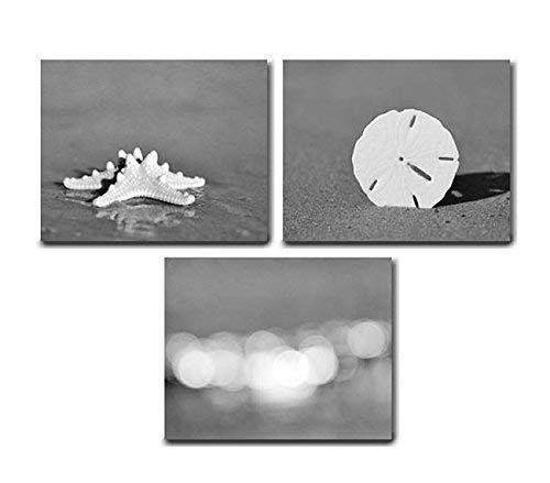 Amazon Com Beach Bathroom Decor Grey And White Beach Theme Bathroom Wall Art Black And White Photographic Print Set Photos Of Seashell Starfish Sand Dollar Ocean Light Sparkles Cottage Bath Set Of 3
