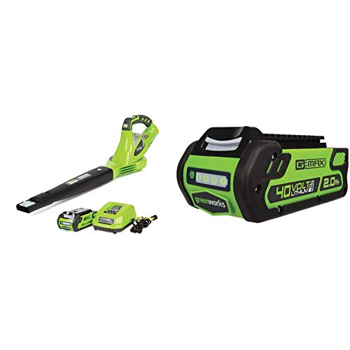 Greenworks 24252 40V 150 MPH Variable Speed Cordless Leaf Blower, 2.0Ah Battery and Charger Included & 40V 2.0 AH Lithium Ion Battery 29462