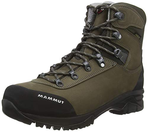 Mammut Herren Trovat Advanced High GTX Trekking-& Wanderstiefel, Braun (Bark/Grey 000), 46 EU