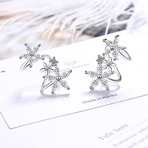 XAOQW 925 Pendientes de Plata de Ley Moda Espiral de Flores Pendientes de Caramelo Damas exquisitas Joyas Regalos-B_China