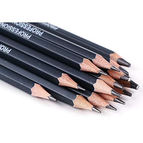 14pcs Skizze Bleistift Set für Skizzieren und Zeichnen mit Kohlestifte Papierstifte HB 2B 6H 4H 2H 3B 4B 5B 6B 10B 12B 1B