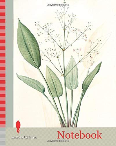 Notebook: Alisma plantago, Alisma Plantago-aquatica, Fluteau plantain d'eau, Great Water Plantain, Redouté, Pierre Joseph, 1759-1840, les liliacees, 1802 - 1816