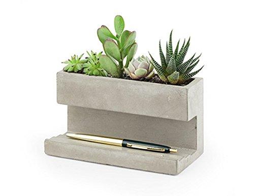 Kikkerland PL02-L plantenpot van beton voor op het bureau, Go Green op kantoor, voor pennen en visitekaartjes, afmetingen 16,3 x 9,1 x 8 cm.