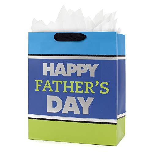 Hallmark - Bolsa de regalo para el día del padre (tamaño grande), diseño con papel de seda, Grande Azul y Verde, Large, 1
