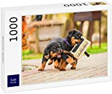 Lais Puzzle Cachorros de Rottweiler 1000 Piezas