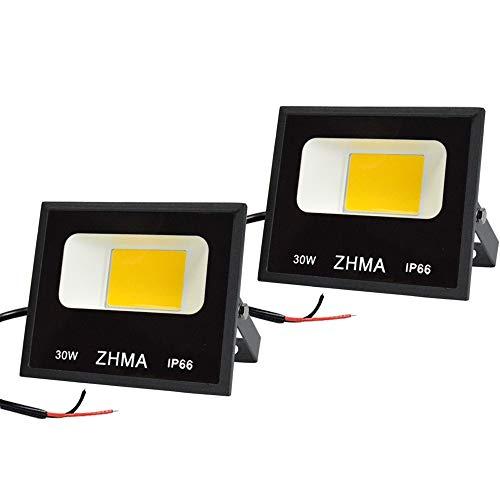 ZHMA 30W LED Outdoor Landscape Lighting, 12V~60V DC Low Voltage Warm White Flood Light, 6500K IP66 Waterproof Security Lights, Garden, Wall, Yard, Boat Lights [2 Pack]