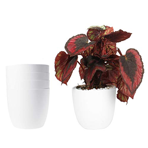 ROSOLI Plastic Planters Modern Decorative Indoor Outdoor Flower Plant Pots with Drainage for All House Plants, Mint, Herbs, Peace Lily, African Violets, Orchid, Set of 5 (3.75 Inches, White)