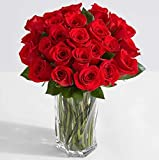 24 gorgeous, long-stemmed red roses arrive hand-tied in eco-friendly wrap. These roses ship overnight to ensure freshness. No deliveries on Saturday, Sunday, or Monday. Classic bouquet comes with care instructions, plus BloomsyBox flower feed for lon...