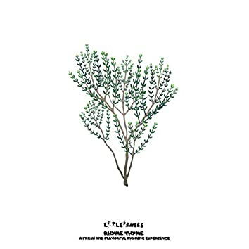 Rhyme Thyme: Short Vowel Sounds (-T)