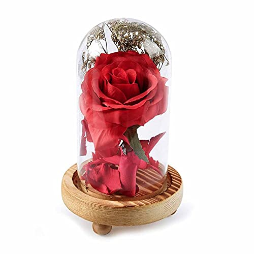 RUMUI Flor de simulación de Tela Rosa con pétalos caídos en cúpula de Vidrio sobre Base de Madera para decoración del hogar Fiesta de Vacaciones Aniversario de Bodas