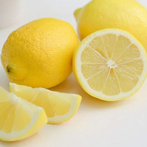 瀬戸内レモン 整品 5kg 国産レモン ハウス栽培 愛媛 岩城島 いわぎ島 マルシェ愛媛
