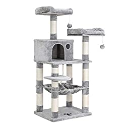 Best Cat Tree for Scottish Fold Cat
