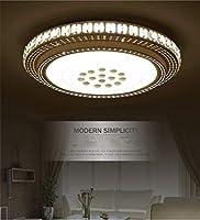 WEM 装飾的なシャンデリア、シーリングランプ、60Cmの主導ラウンド天井のランプリビングルームの天井のランプ、調光暖かいベッドライトミニマルームライティングホワイトライト,ホワイト・ライト
