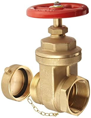 """Dixon WDGV251F Forged Brass Non-rising Stem Wedge Disc Gate Valves, 2-1/2"""" NPT Female x NST Male from Dixon Valve & Coupling"""
