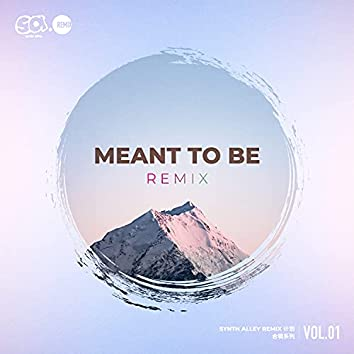 Meant To Be Remix (Synth Alley Remix计划合辑系列 Vol.1)