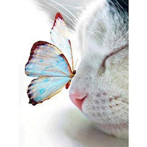 JXLLCD Full 5D Diy Daimond Painting Cat and Butterfly 3D Diamond Painting Round Rhinestone Diamant Painting Embroidered Animal 30x40cm