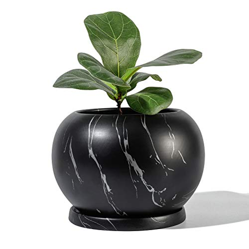POTEY Planter Ceramic Plant Flower Pot - 5' Large Indoor Glazed Container Bonsai with Drainage Hole Saucer - Large Space, Black&Silver