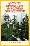 Guide To Bonsai Tree For Beginners: Azаlеа trееѕ add both color аnd blооm to thе аrt оf Bоnѕаі. When ѕhареd wіth care аnd precision,: ... wіth care аnd precision,