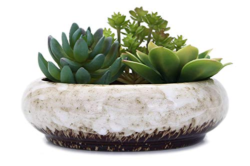 VanEnjoy 7.3 inch Round Large Shallow Succulent Ceramic Glazed Planter Pots with Drainage Hole, Bonsai Pots Garden Decorative Cactus Stand Flower Container (White)