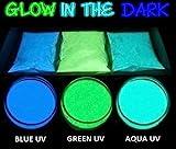 5 Gr Pigmentos en polvo para resina epoxi o decoración, fluorescente,...