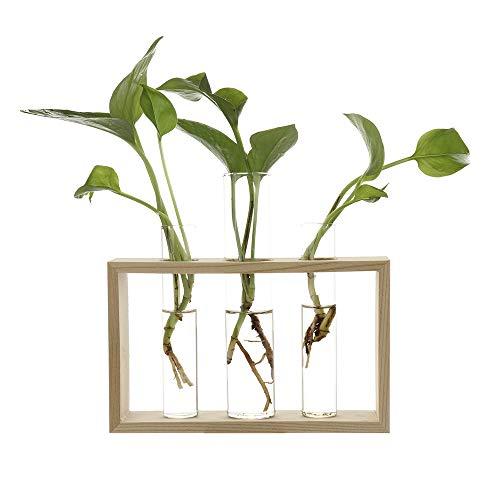Wuxi Chuannan Wasserpflanzen-Glasvase, Reagenzglas, Moderne Blume, mit Retro-Ständer, aus massivem Holz, Tischplatte für Hydrokultur, Pflanzen zu Hause, Garten