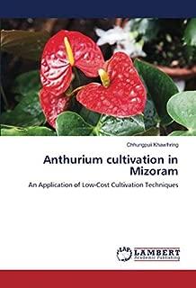 cost of anthurium plant