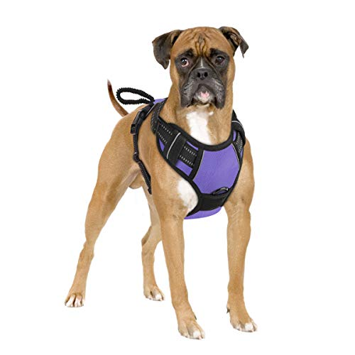 Pawaboo Dog Harness, No Pull Pet Vest Harness Adjustable Reflective Oxford Soft Padded Easy Control Handle for Outdoor Walking, Suitable for Small, Medium, Large Dogs, Purple
