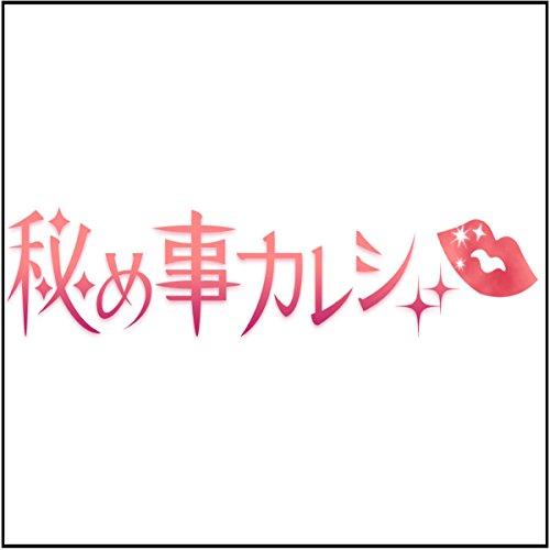 『満員電車痴○調教「秘め事カレシ」より』のカバーアート