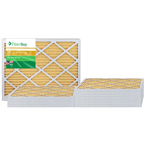 FilterBuy 20x25x1 MERV 11 Pleated AC Furnace Air Filter, (Pack of 12 Filters), 20x25x1 – Gold