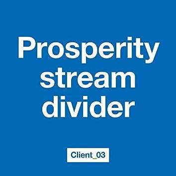Prosperity Stream Divider