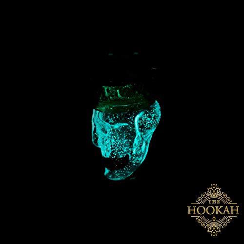 Molassefänger THE DEAD KING WOODOO von THE HOOKAH XXLTotenkopf SKULL SCHÄDEL Vorkühler | Aus Glas für 18/8 Schliff und eine saubere Shisha/Wasserpfeife