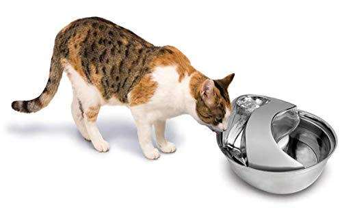 Pioneer Cat Water Fountain review