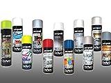 Rugoplast - Esmalte en spray para pintar hierros, rejas, portones, puertas, ventanas, madera... Varios Modelos, Blanco Anticalórico 600 Grados
