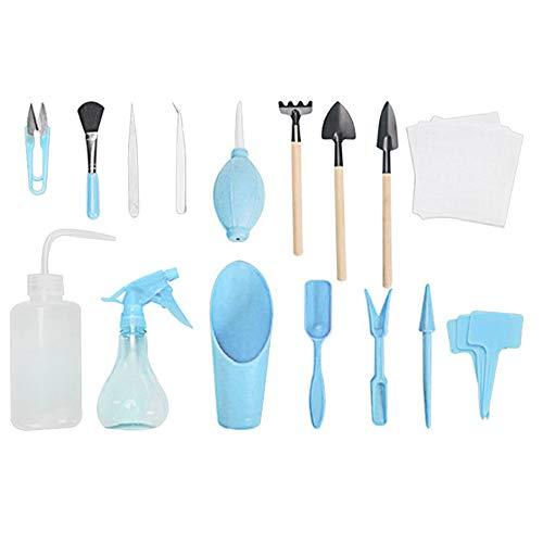 Seully Outils de Plantation,Mini Ensemble D'outils de...