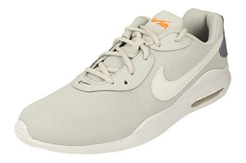 Nike Air MAX Oketo Hombre Running Trainers AQ2235 Sneakers Zapatos (UK 8 US 9 EU 42.5, Pure Platinum White Fog 017)
