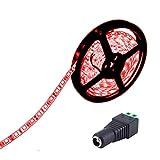 JOYLIT Tiras LED 12V rojo 300 LEDs SMD5050 IP65...